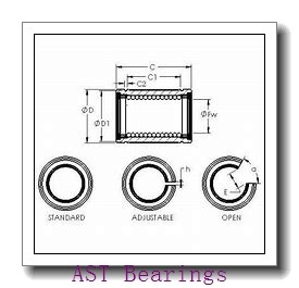 AST GAC150S plain bearings