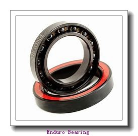 Enduro GE 25 SX plain bearings