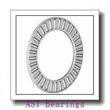 AST NJ202 EM6 cylindrical roller bearings