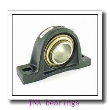 INA GE110-SX plain bearings